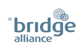 bridge alliance 170x130 2